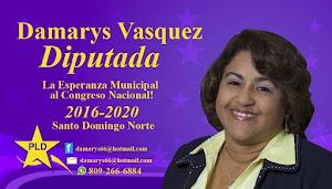 Damarys Vasquez Diputada
