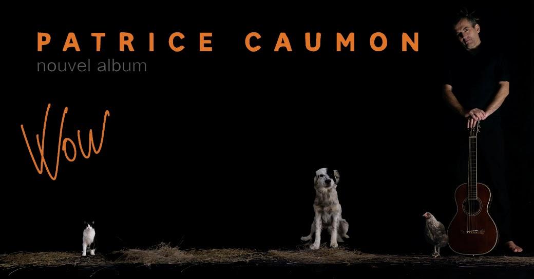 Patrice Caumon - Wow - Nouvel album 8 titres