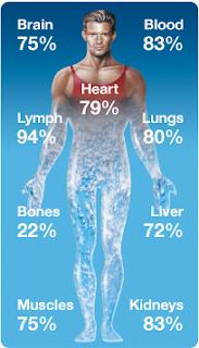 tips minum air cukup, cara minum cukup air, berapa liter sehari, kenapa perlu air, air dalam badan, komposisi air dalam badan, minum air, jumlah liter sehari