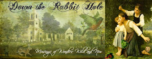 Down the Rabbit Hole Blog Banner