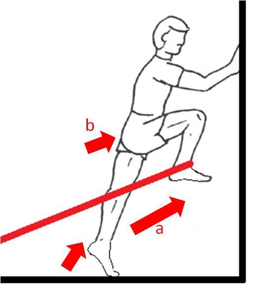 Valoración del movimiento y prescripción de ejercicio: El ...