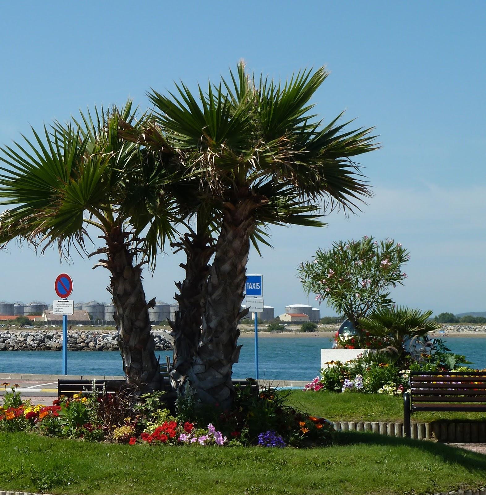 Traces de pastel exposition port la nouvelle - Office de tourisme port la nouvelle ...