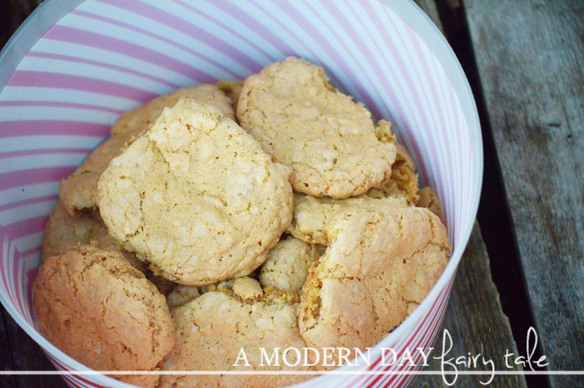 Great Grandma Hartloff's Dish Pan Cookies