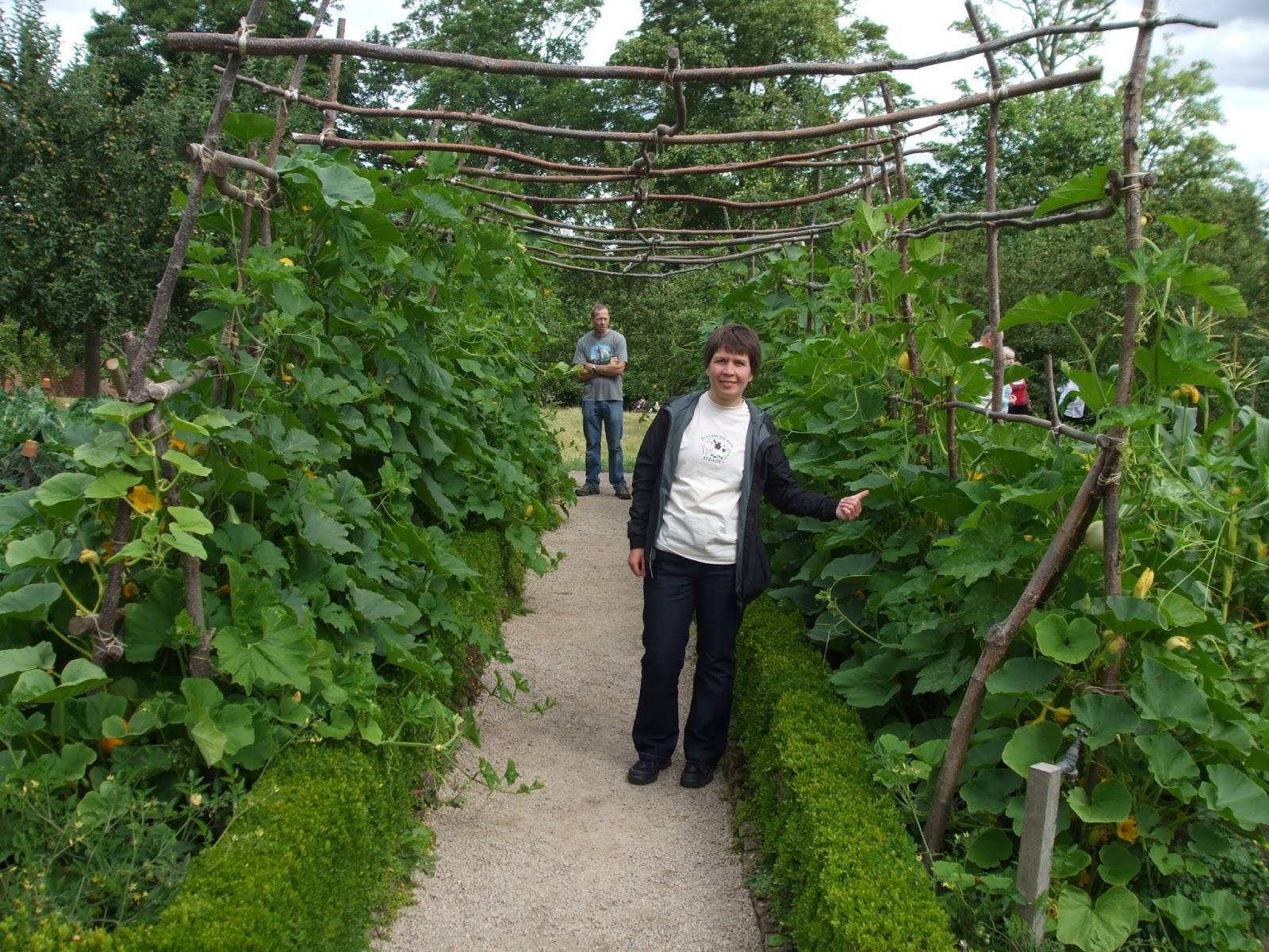 The Naked Gardener by L. B. Gschwandtner (2010, Trade