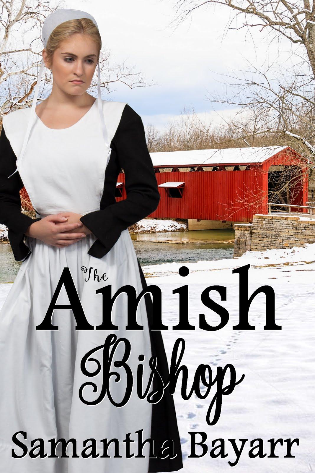 Amish Suspense