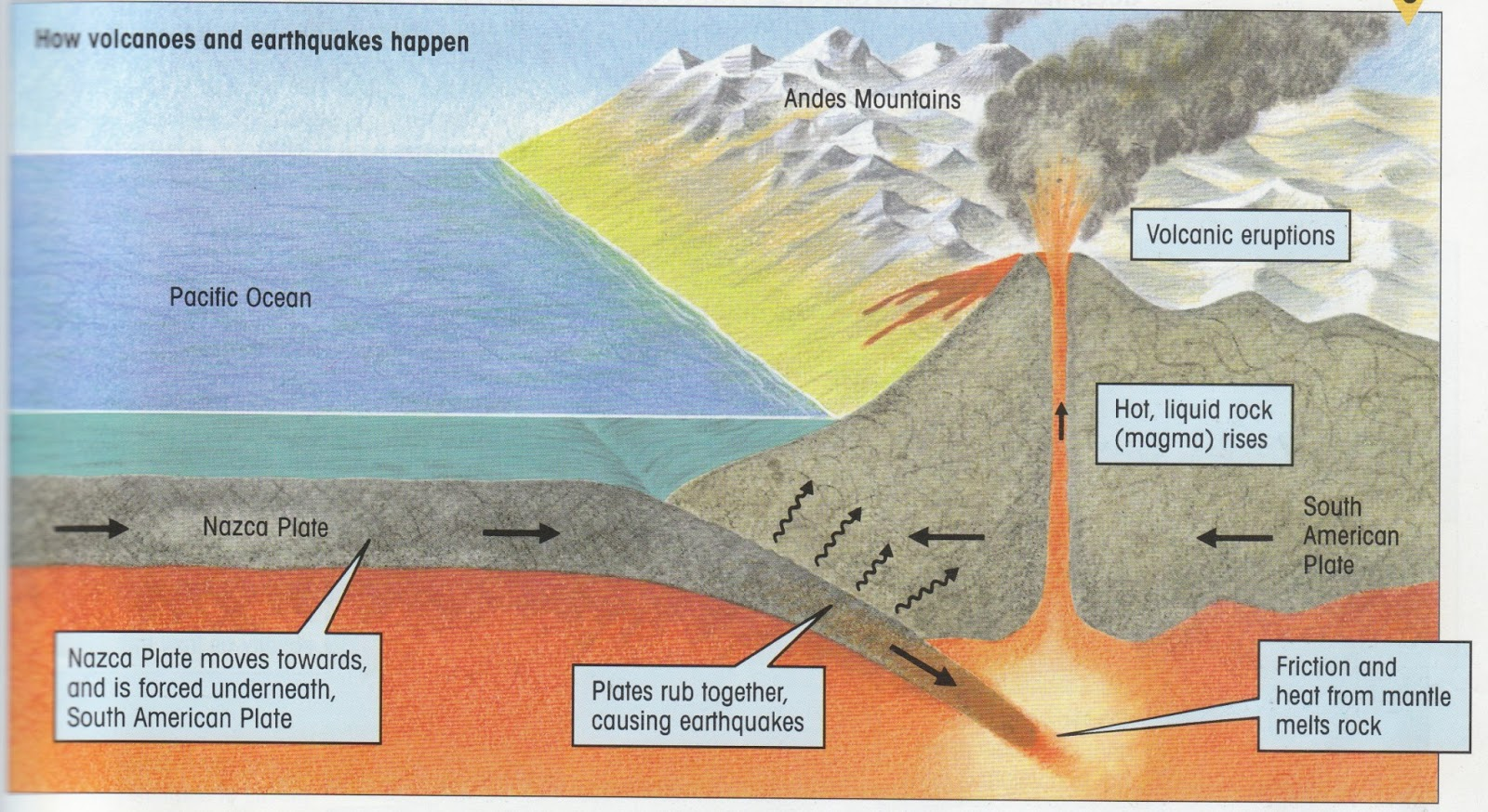You will need to know what happens when earthquakes and volcanoes such ...