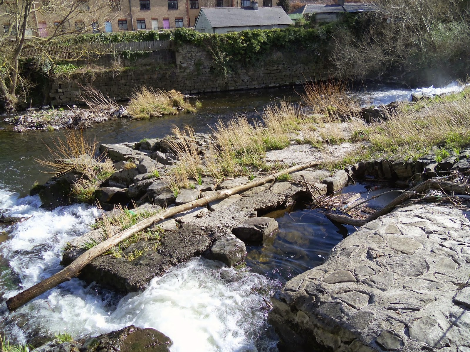 Donnybrook Waterfall River Dodder Dublin, Ireland