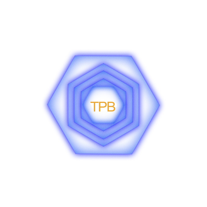 T E N - p - B A G
