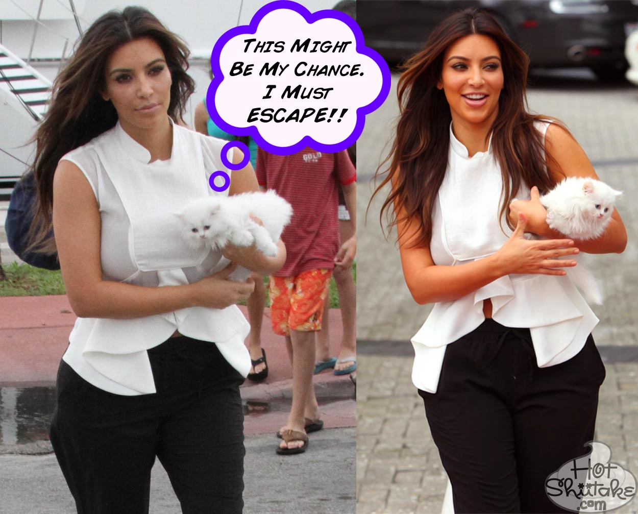 Kim Kardashian Cat Mercy Depressed