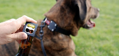 Coolest and Awesome Dog Collars (15) 4