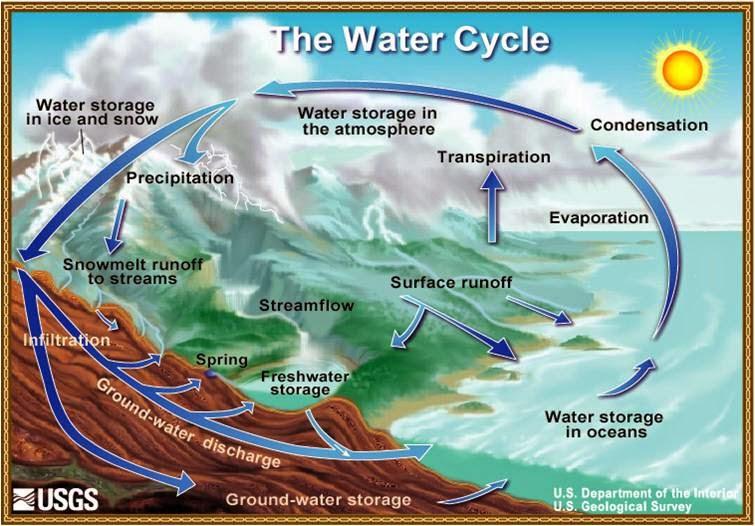 Environmental Studies The Water Cycle