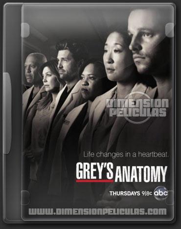 Greys Anatomy Temporada 9 (HDTV Ingles Subtitulado) (2012)