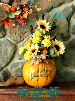 pumpkin, pumkin, pumpkins, pumkins, decor