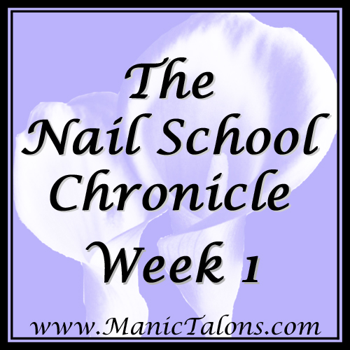 The Nail School Chronicle: Week 1