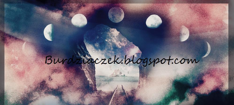 Burdziaczek.blogspot.com