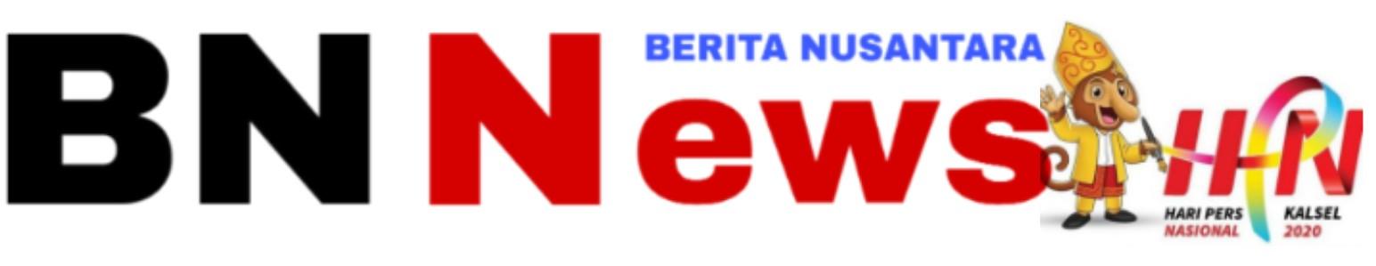 BNNews.top