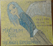 Book Art by Blei: Maximum Ride: The Angel Experiment