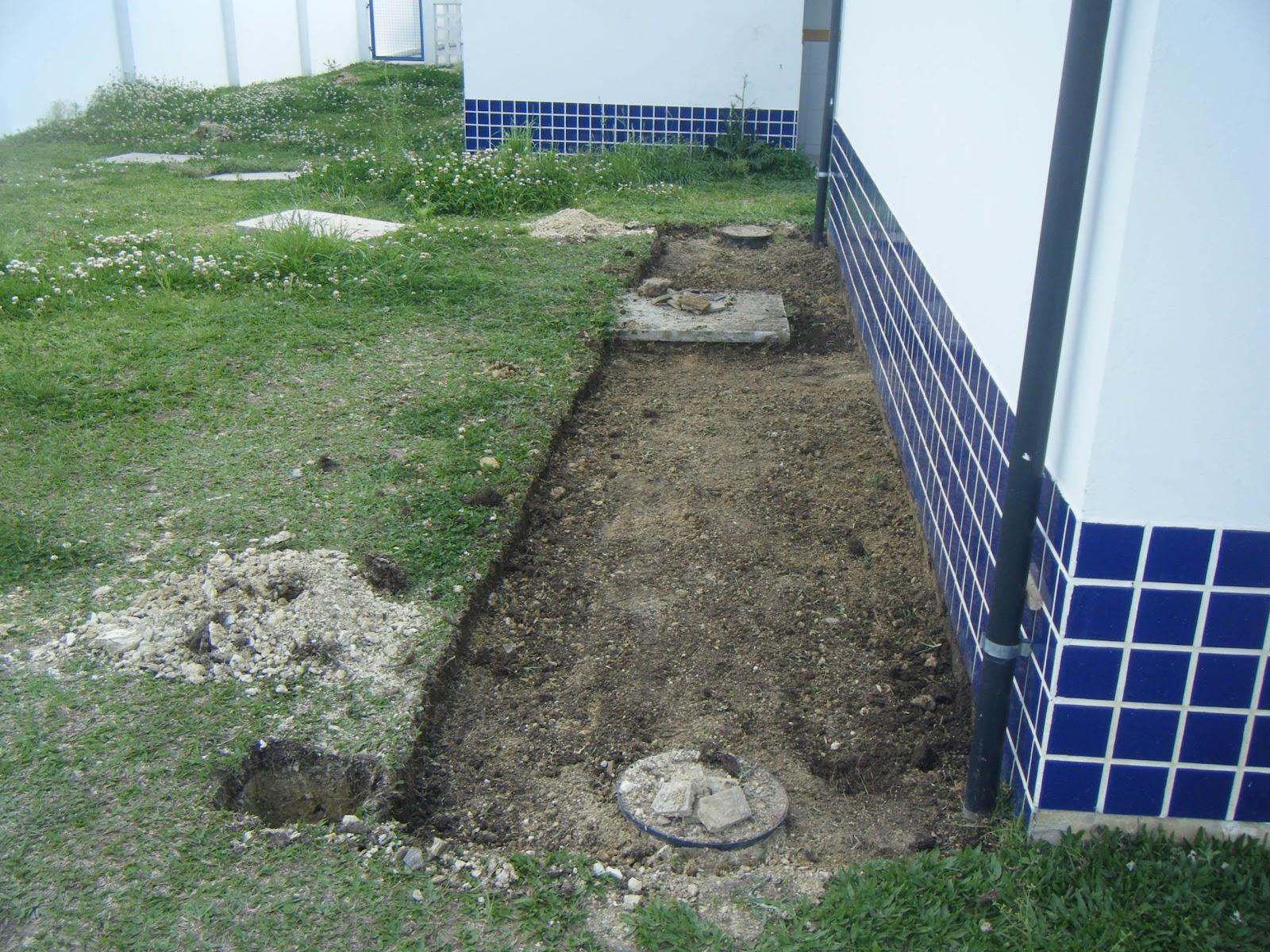 horta jardim e pomar:preparação do jardim jardim hoje