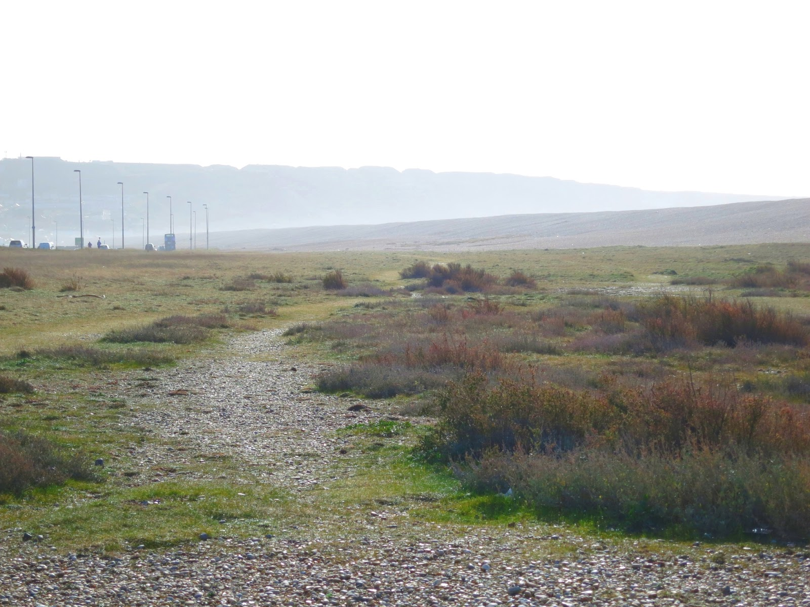 Path between Chesil Beach and the causeway to Portland. March 1st 2015.