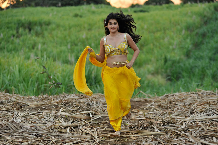 Mogudu Movie Actress Tapsee Spicy Navel Show Photos wallpapers
