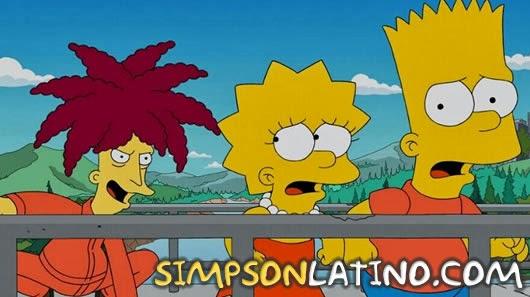 Los Simpson 25x13