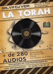 Audio Torah - Kehila Gozo y Paz