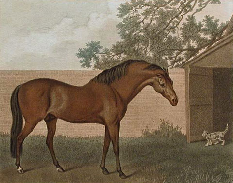Godolphin and Grimalkin