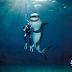 Abrazos de tiburón