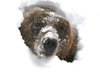 Σε χειμερία νάρκη