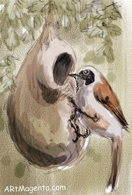 Penduline Tit is a bird drawing by artist and illustrator Artmagenta