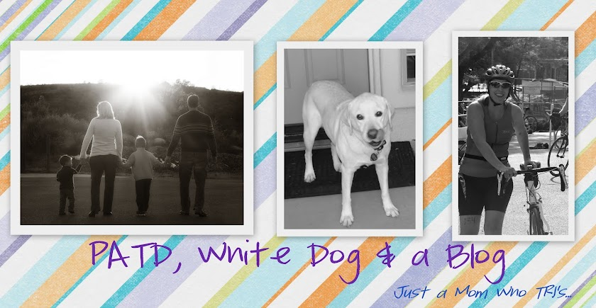 PATd, White Dog and a Blog....Just a Mom Who TRI's