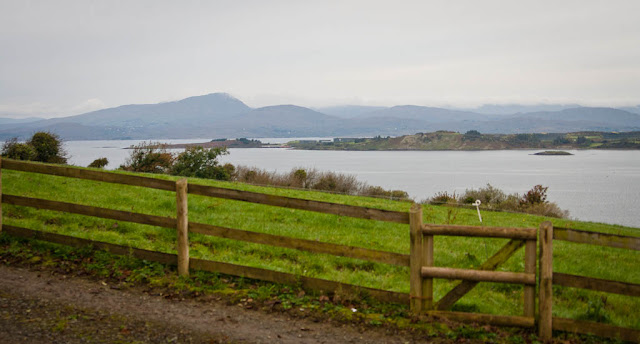 Irish landscape: sea, mountains, green grass  - Bantry, county Cork 