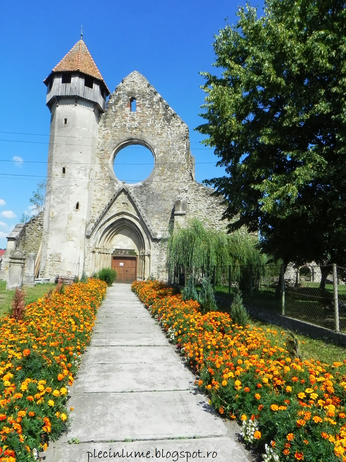 Intrare in manastirea de la Carta