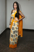 Lavanya Tripathi glam pics in saree-thumbnail-8