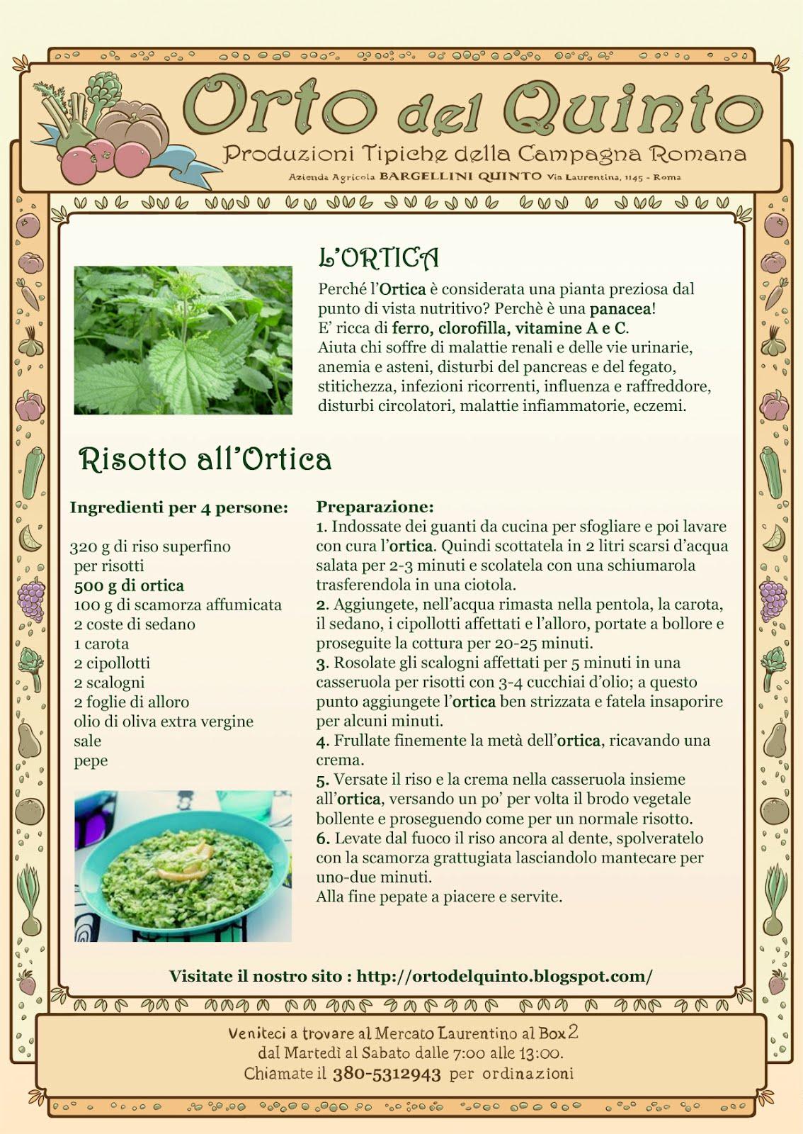 Orto del quinto cucinare l 39 ortica for Cucinare ortica