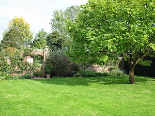 Lawn with specimen tree, Sissinghurst Castle Gardens, Kent