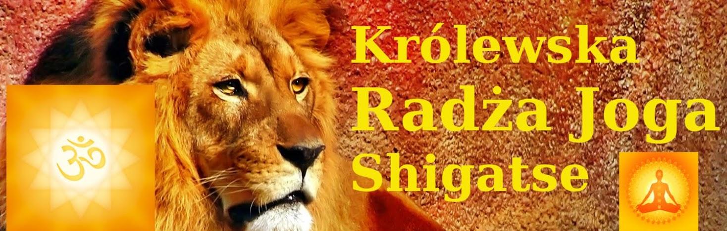 Radża Joga Raja Yoga Królewska Ścieżka Raja Yoga Shigatse Joga Klasyczna Śhigatse Xigazê