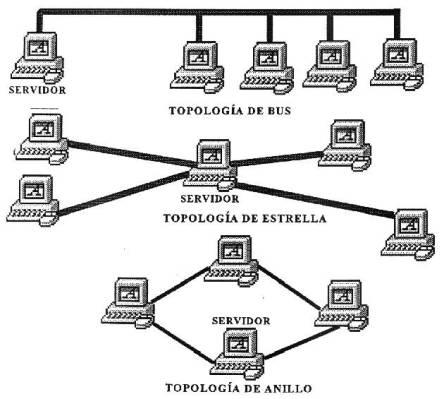 diferentes tipo topologia: