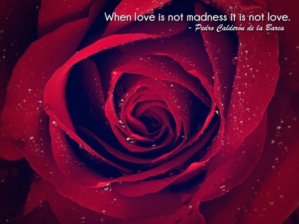when-love-is-not-madness-it-is-not-love