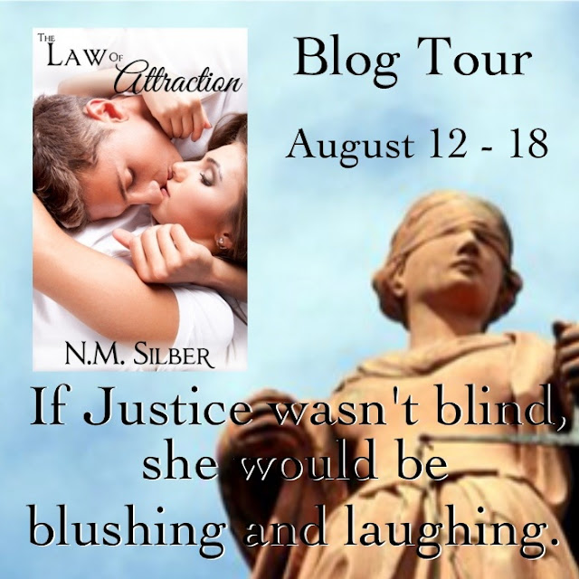 Novels On The Run Blog Tour Review Giveaway The Law Of