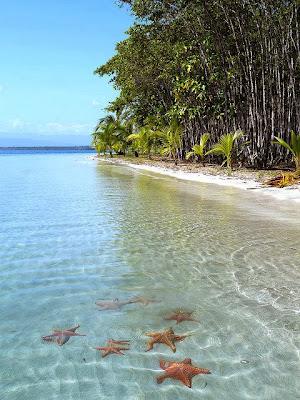 Playa de las Estrellas (Panamá)