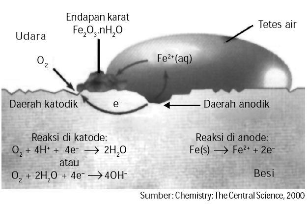 Proses terjadinya, besi, logam, faktor-faktor yang mempengaruhi, kimia