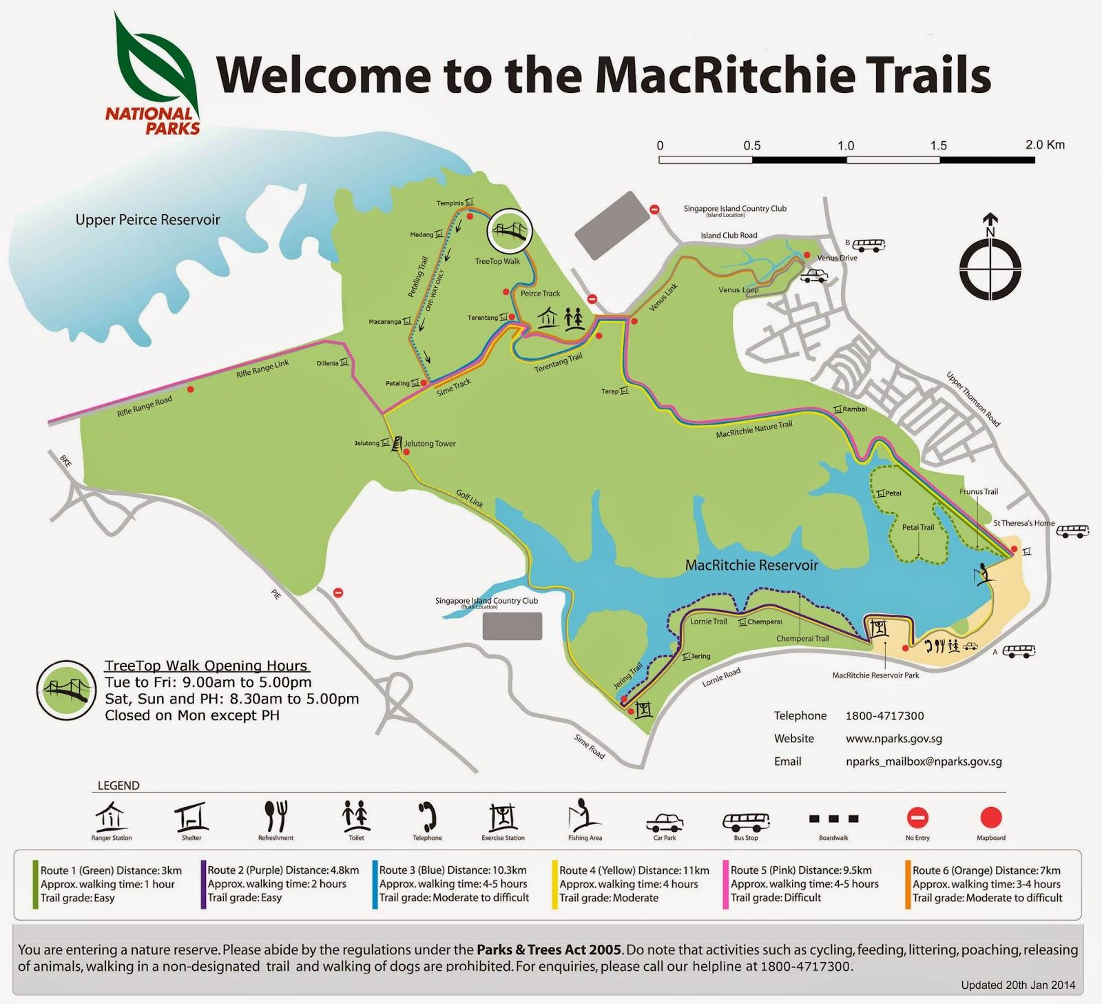 Monkey Tourism To Mac Ritchie Reservoir