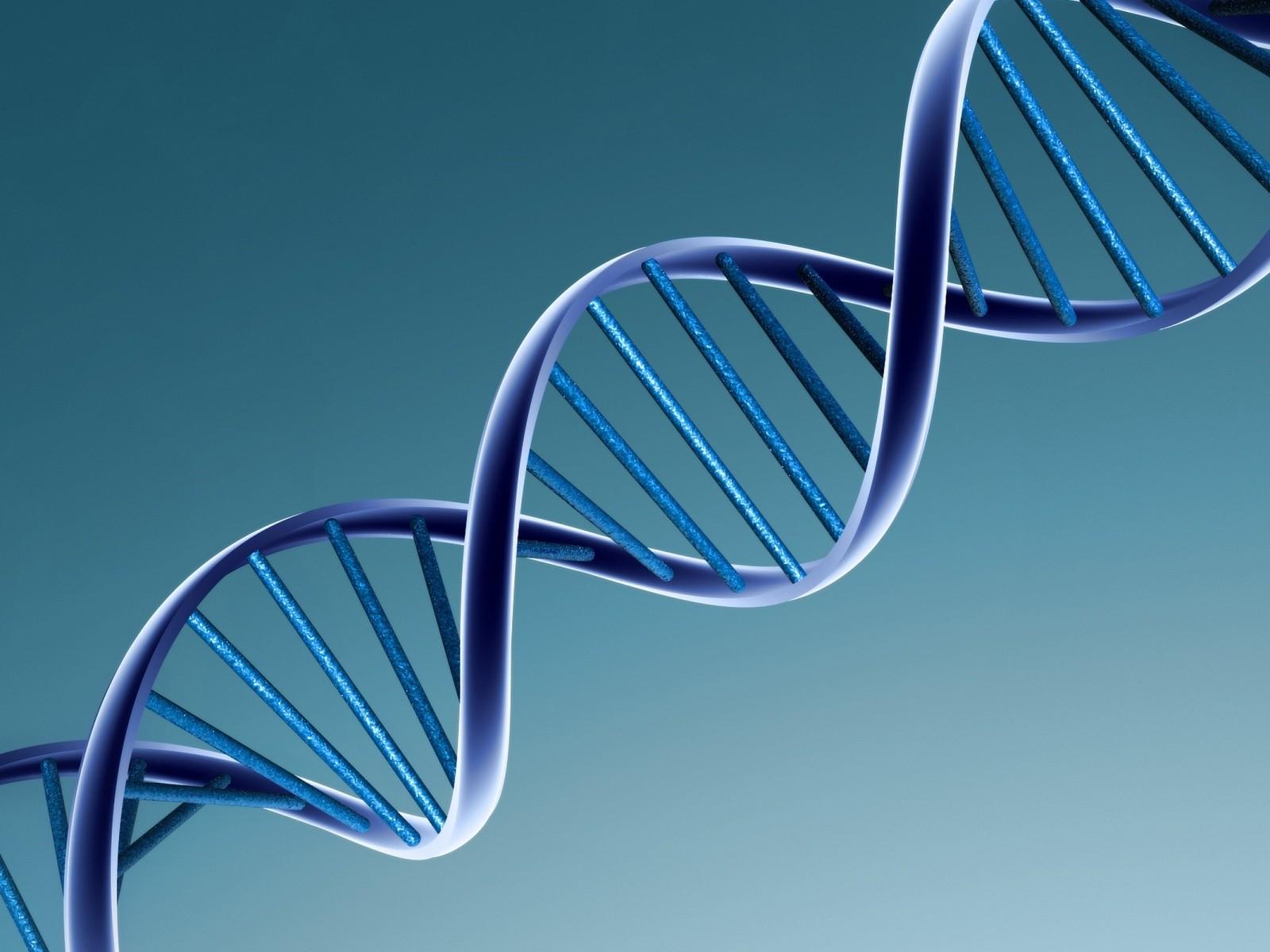 http://3.bp.blogspot.com/-96vXwf4_7FQ/US4Xa7v-XvI/AAAAAAAAG2U/rFC-y9PuFB0/s1600/DNA.jpg