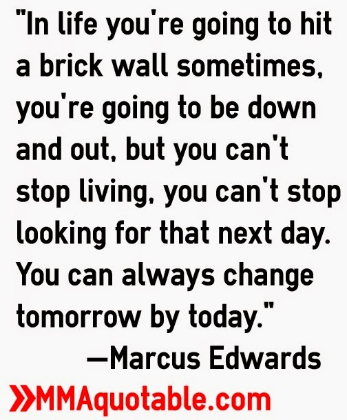 Quotes About Hitting a Brick Wall Going to Hit a Brick Wall