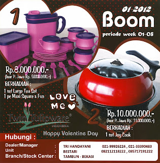 BOOM Tulipware | Januari - Februari 2012
