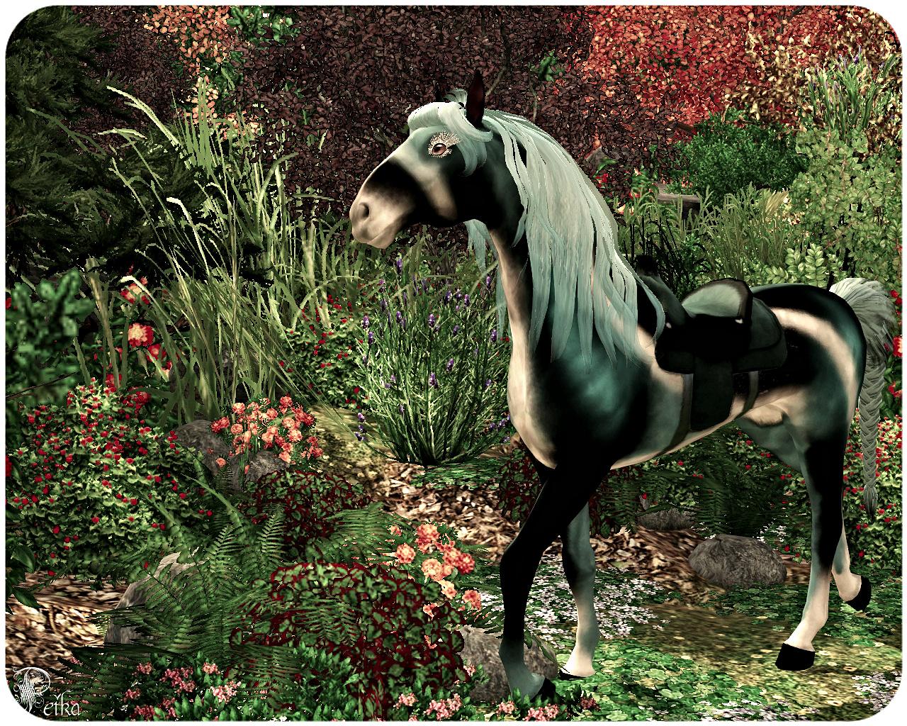 Equus Sims