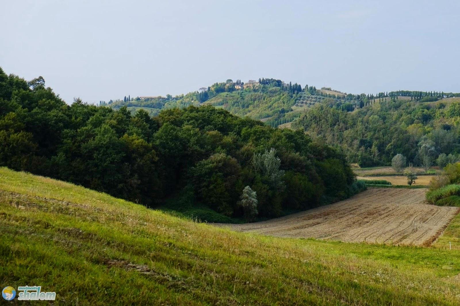 colline di coiano