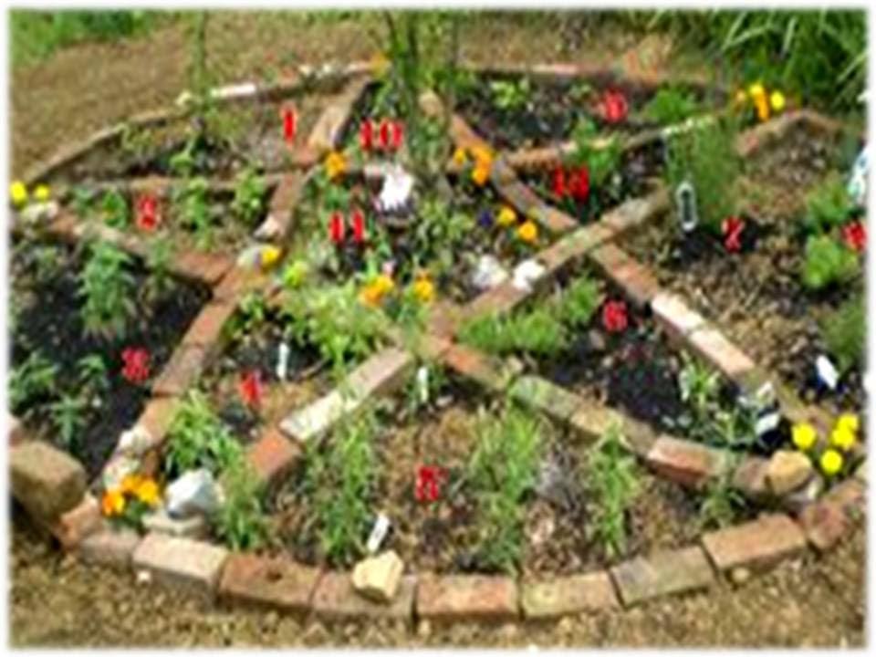 Wicca oraciones y magia como preparar un jard n herbario - Como preparar un jardin ...