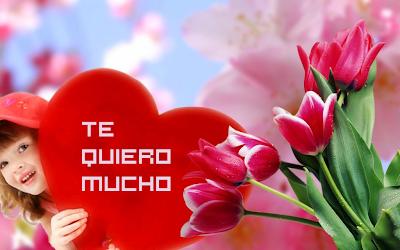 Tulipanes adornando el mensaje te quiero
